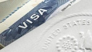 What Makes the H1B Visa So In-Demand? 2
