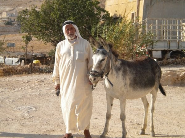 Explore Palestine while Riding on a Donkey 1