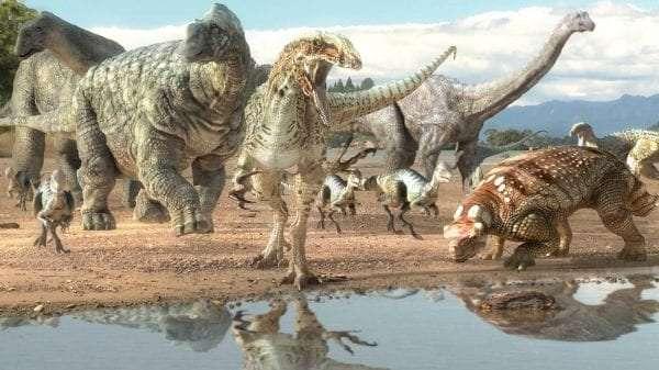 Image result for dinosaur canyon australia