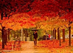Seasons in Canada