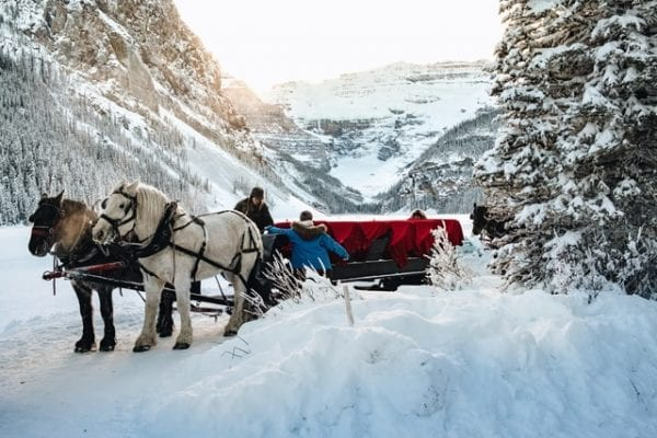 5 Best Things To Do At Lake Louise - The Ultimate Guide You Need 3