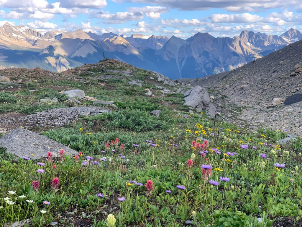 places to visit in BC