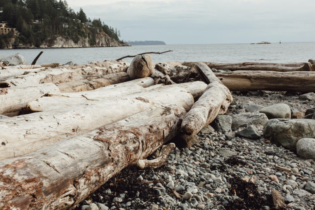 Whytecliff Park : 6 Awesome Things To Do 4