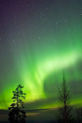 Arctic Circle: 7 Incredible Things to Know ! 3