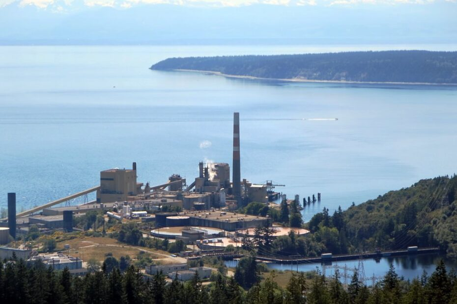 12 Impressive Things That Make Powell River Special 1