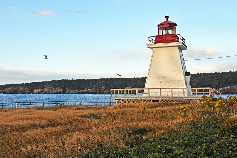 Guided Tour of Lighthouse Park: The Hidden Gem Of The World 1
