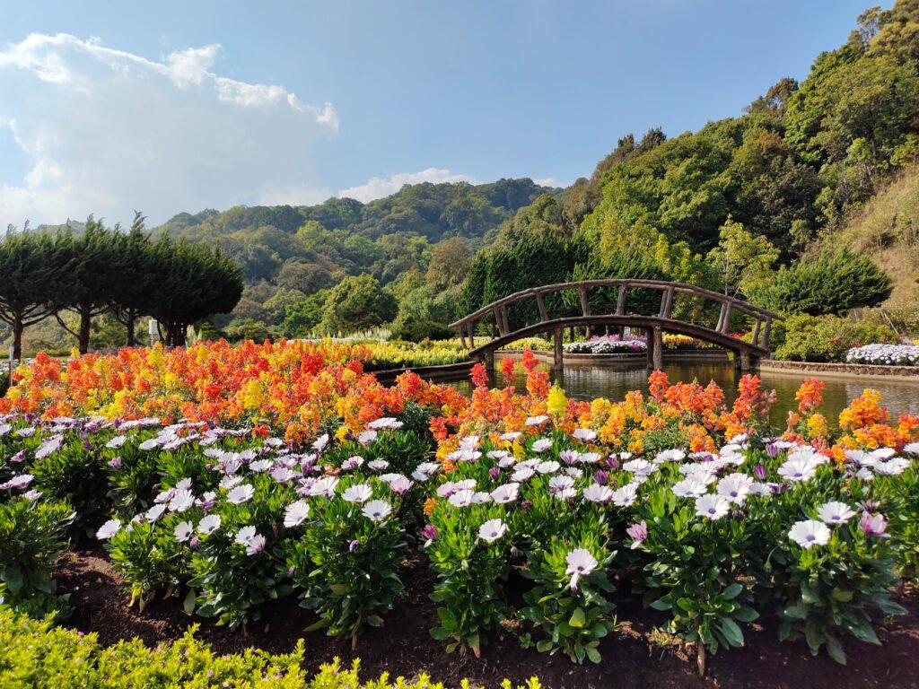 6 Best Vancouver Island Gardens 5