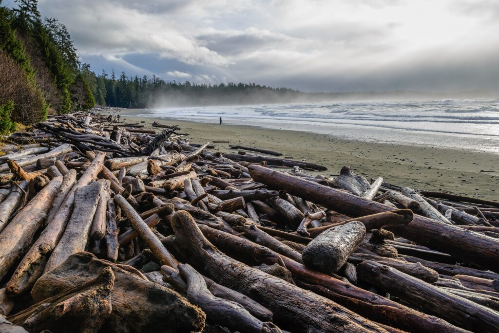 Tofino Campgrounds : The Spectacular Twelve 3