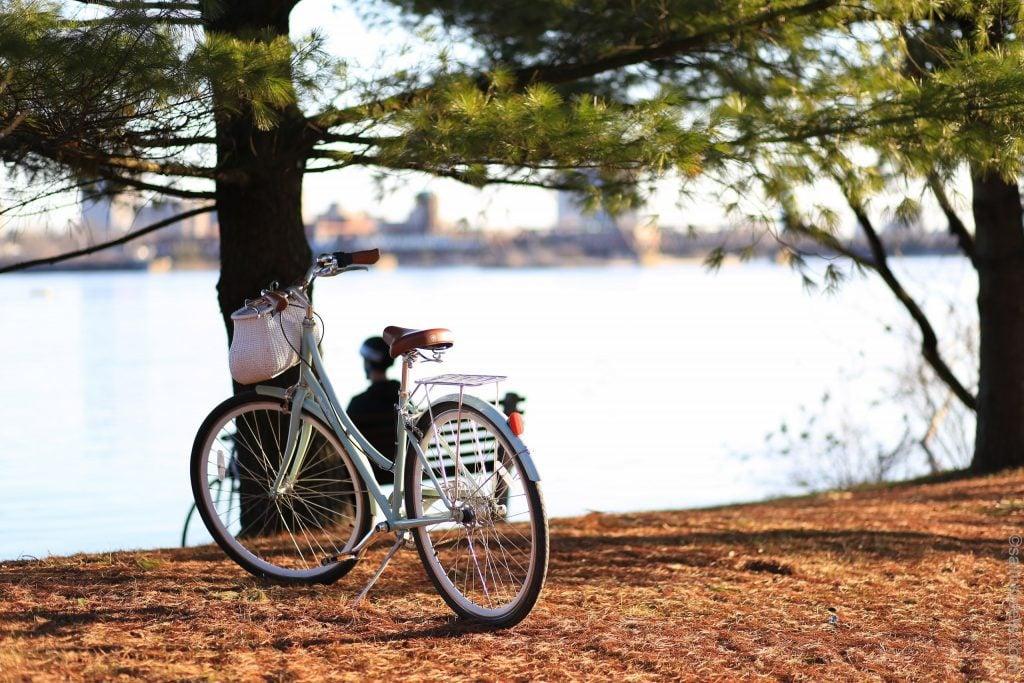 Bike Shop Ottawa