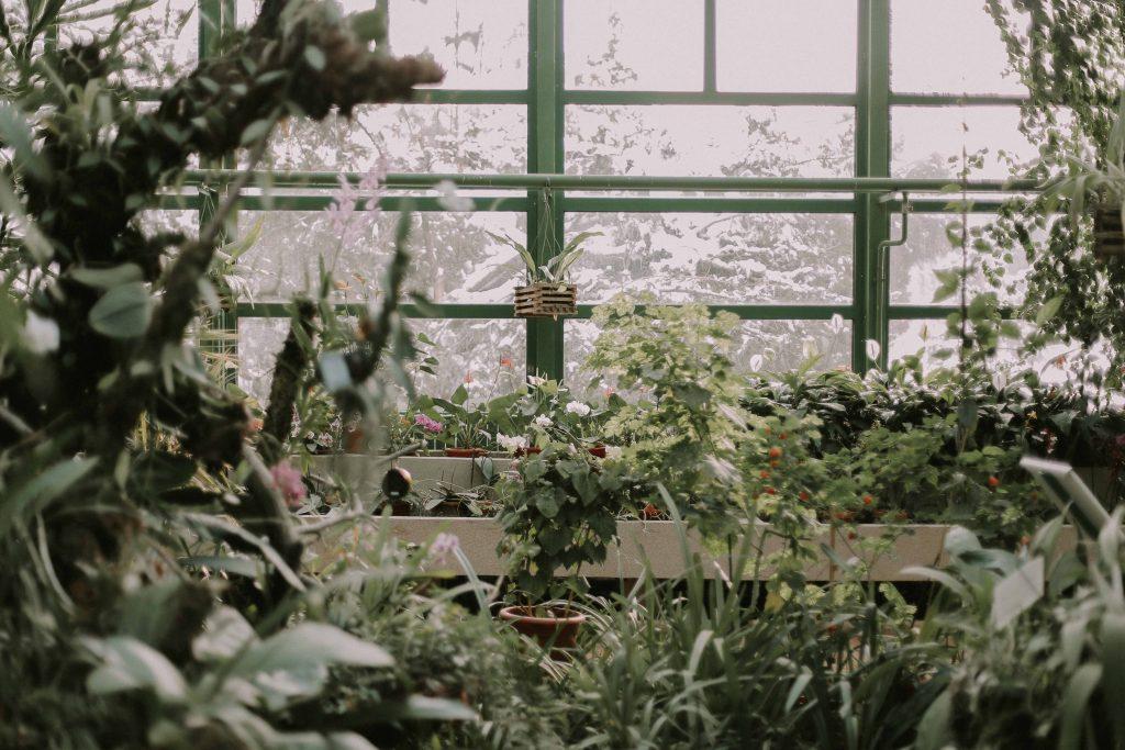 Garden Centres in Ottawa