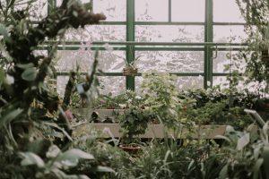 Green Thumb Garden Centre
