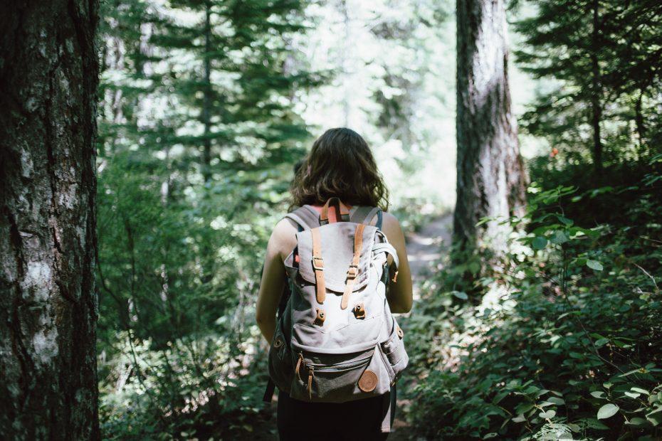 Whistler Hikes