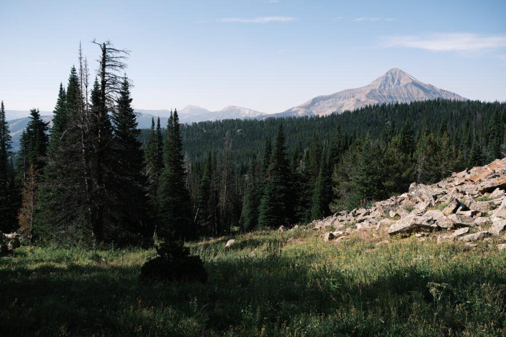 Top 10 Best Road Bike Rides In Montana 2