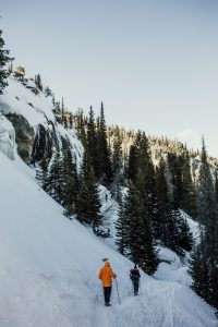 Skiing and Snowmobile