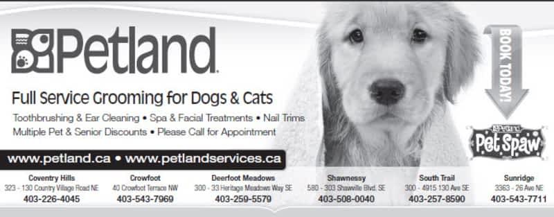 Petland - Pet stores Calgary