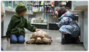 Pisces Pet Emporium - The Largest Family-owned, Independent Pet Store