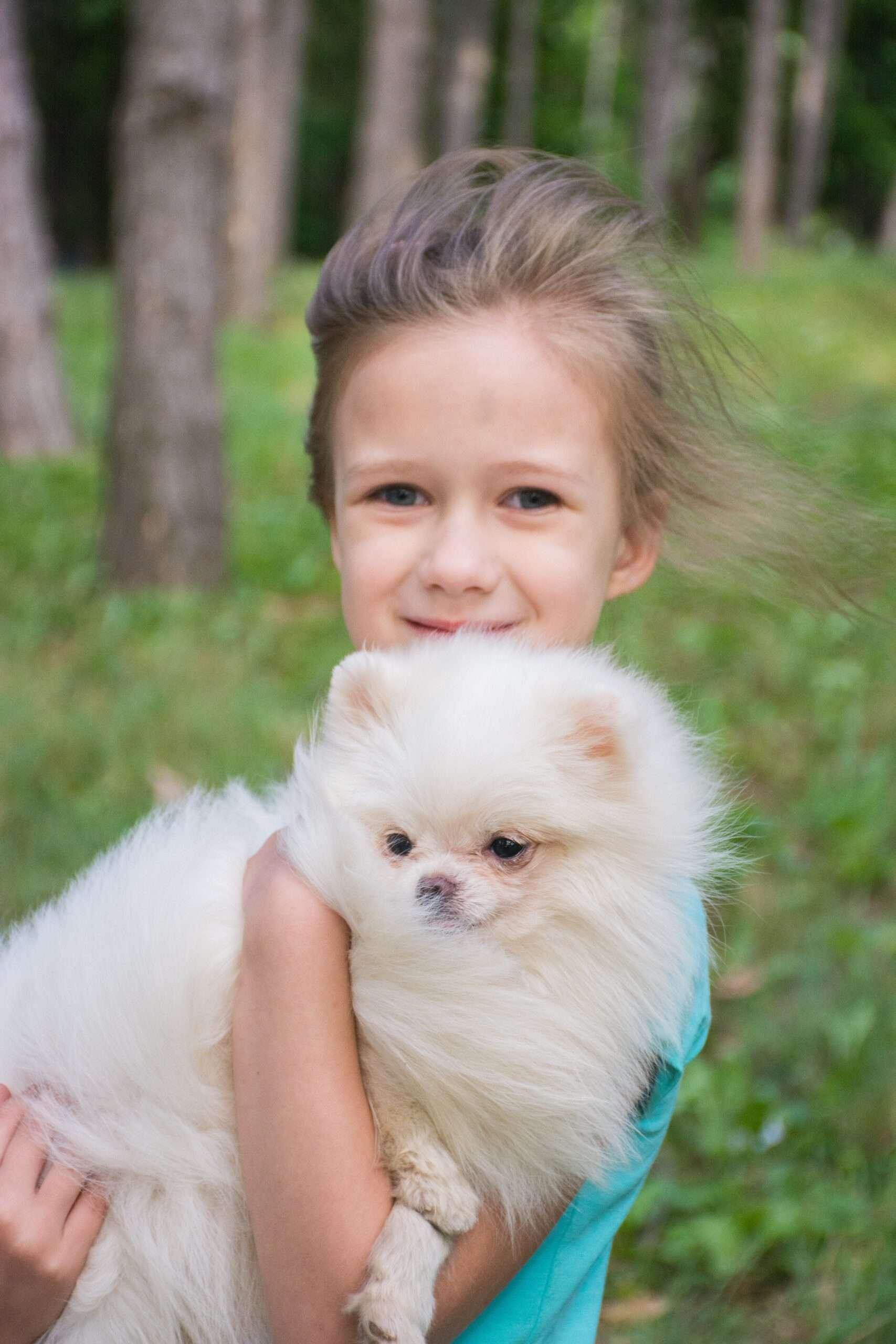Dog Adoption Edmonton