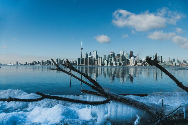 Six Foods to Add to Your Diet To Survive Your First Winter In Canada 1