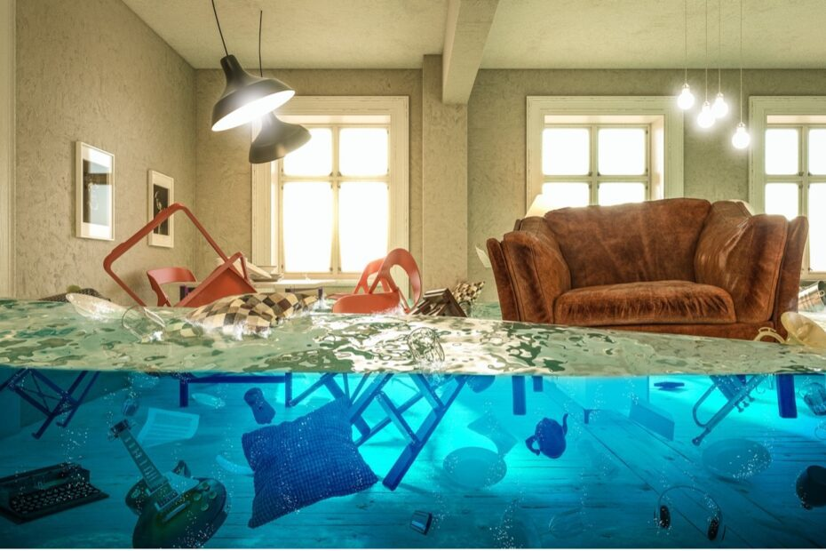 3 Reasons Why a Leaky Basement Should Never be Ignored  1