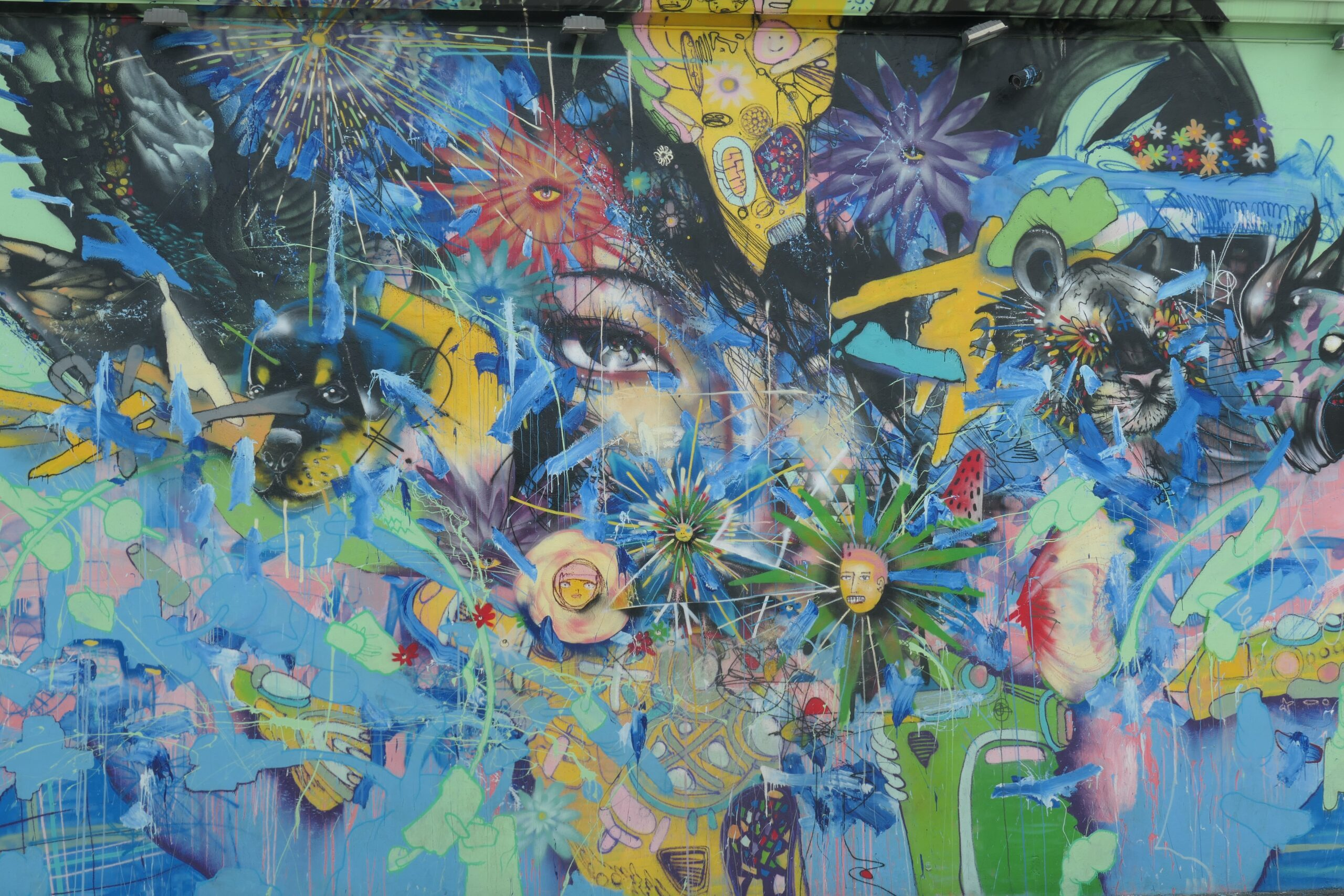 The Mural Festival: 7 Colorful Features 1