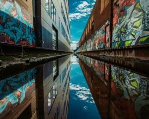 The Mural Festival: 7 Colorful Features 3
