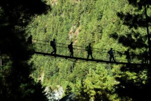 The Blue Mountain: 15 Amazing Activities To Do 1