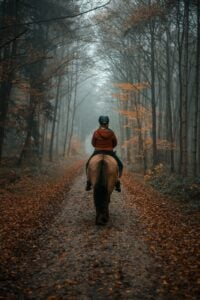 A girl doing horseback riding in the fall
