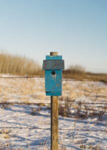 canada post change of address