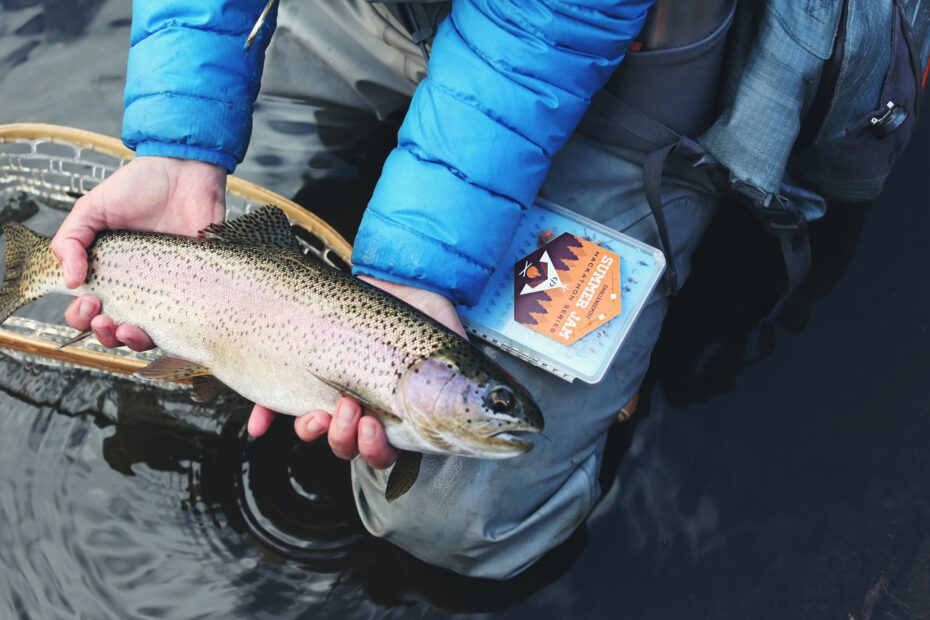 Ontario fishing license