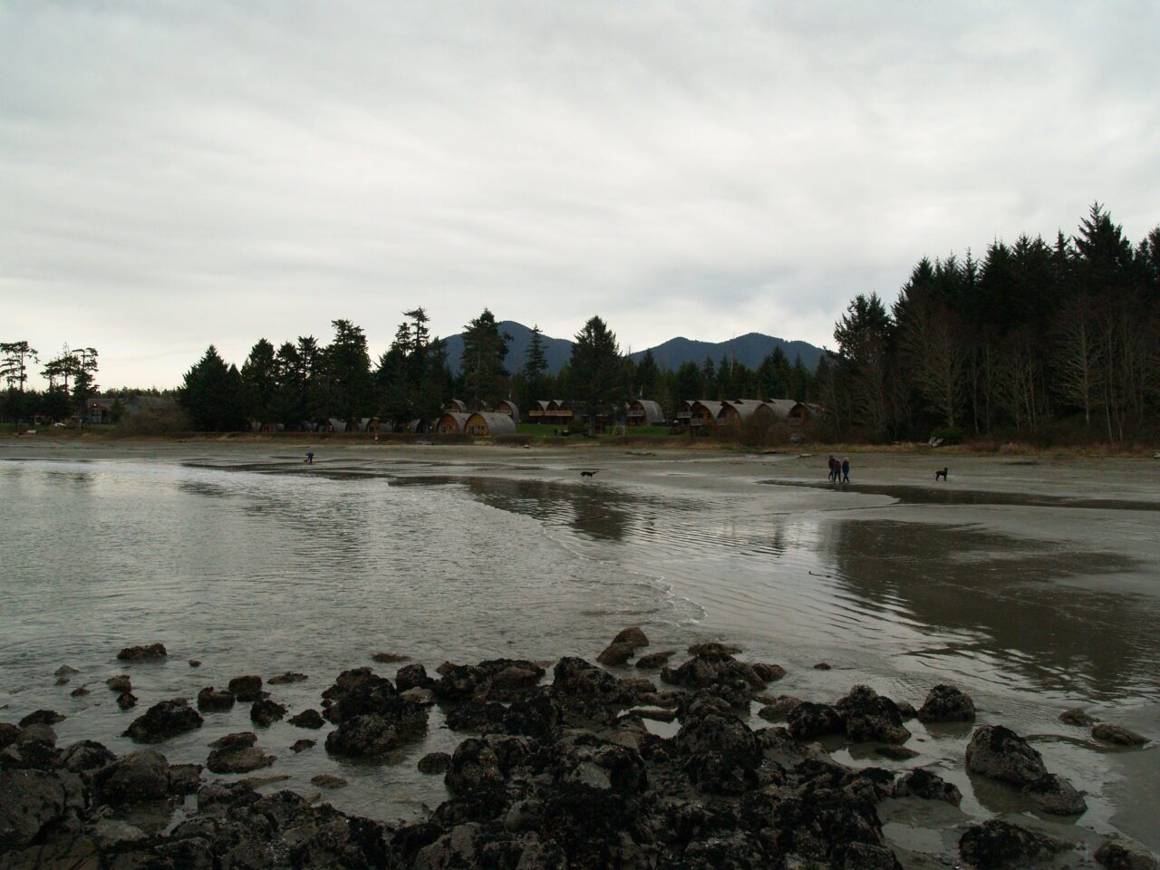 What to See on Vancouver Island? 14 Best Places 13