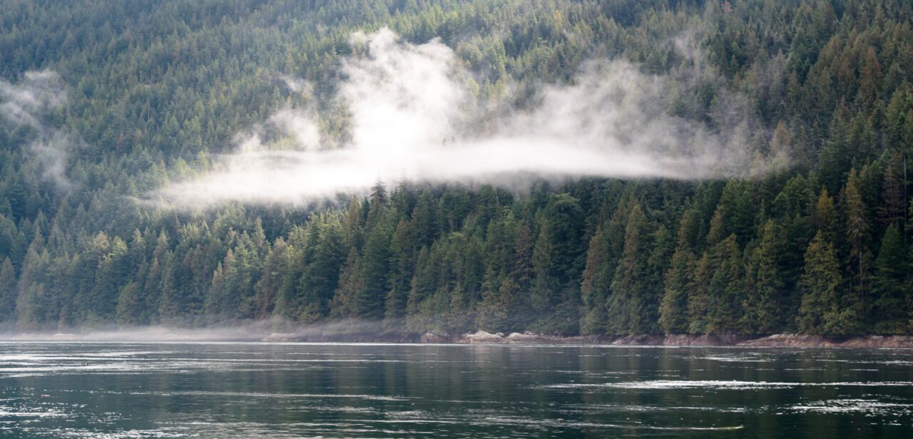 What to See on Vancouver Island? 14 Best Places 14