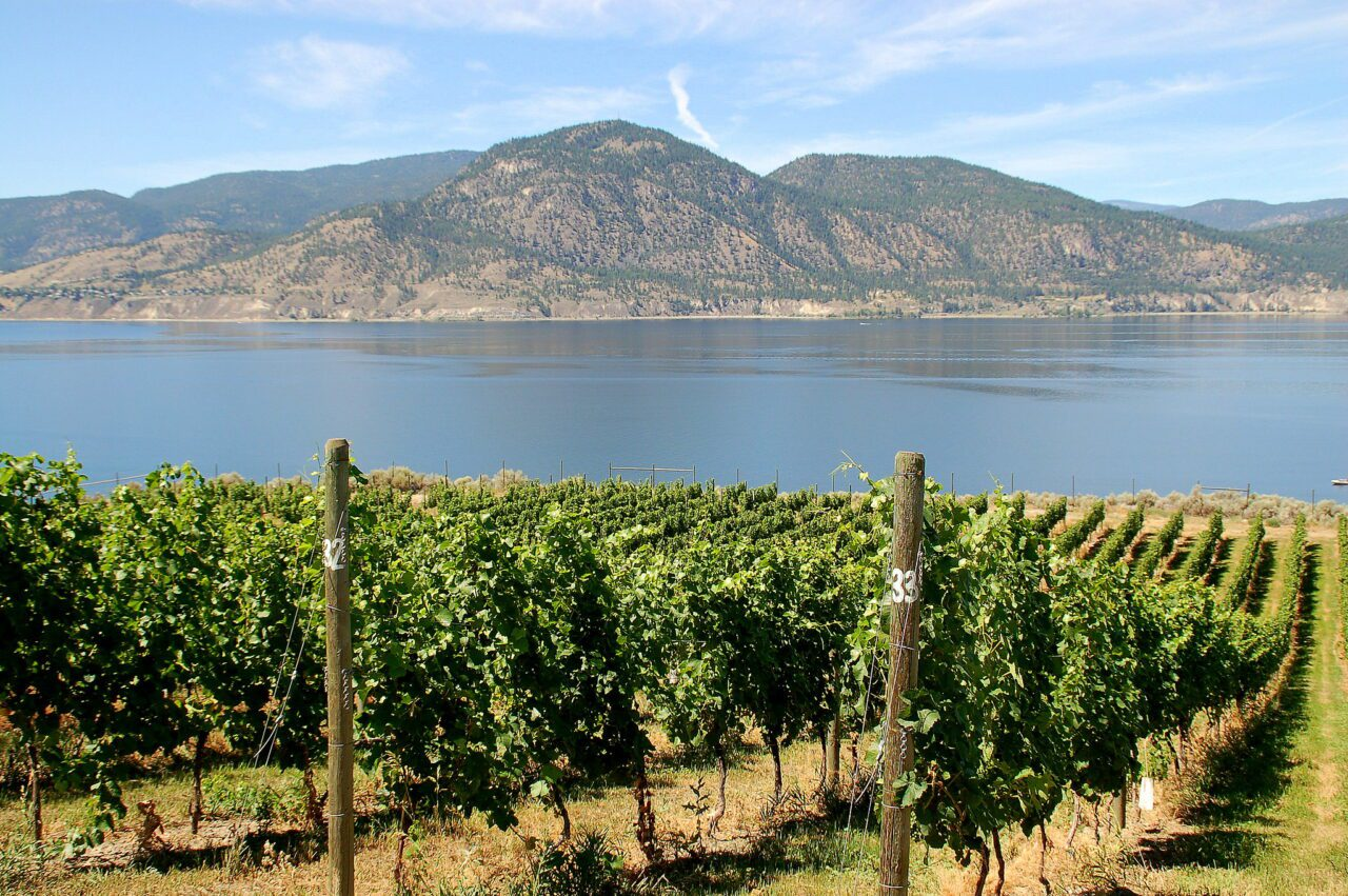 The Okanagan Lifestyle - What to Expect? 3