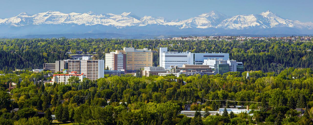 10 Top Colleges in Calgary You Can Study In 6