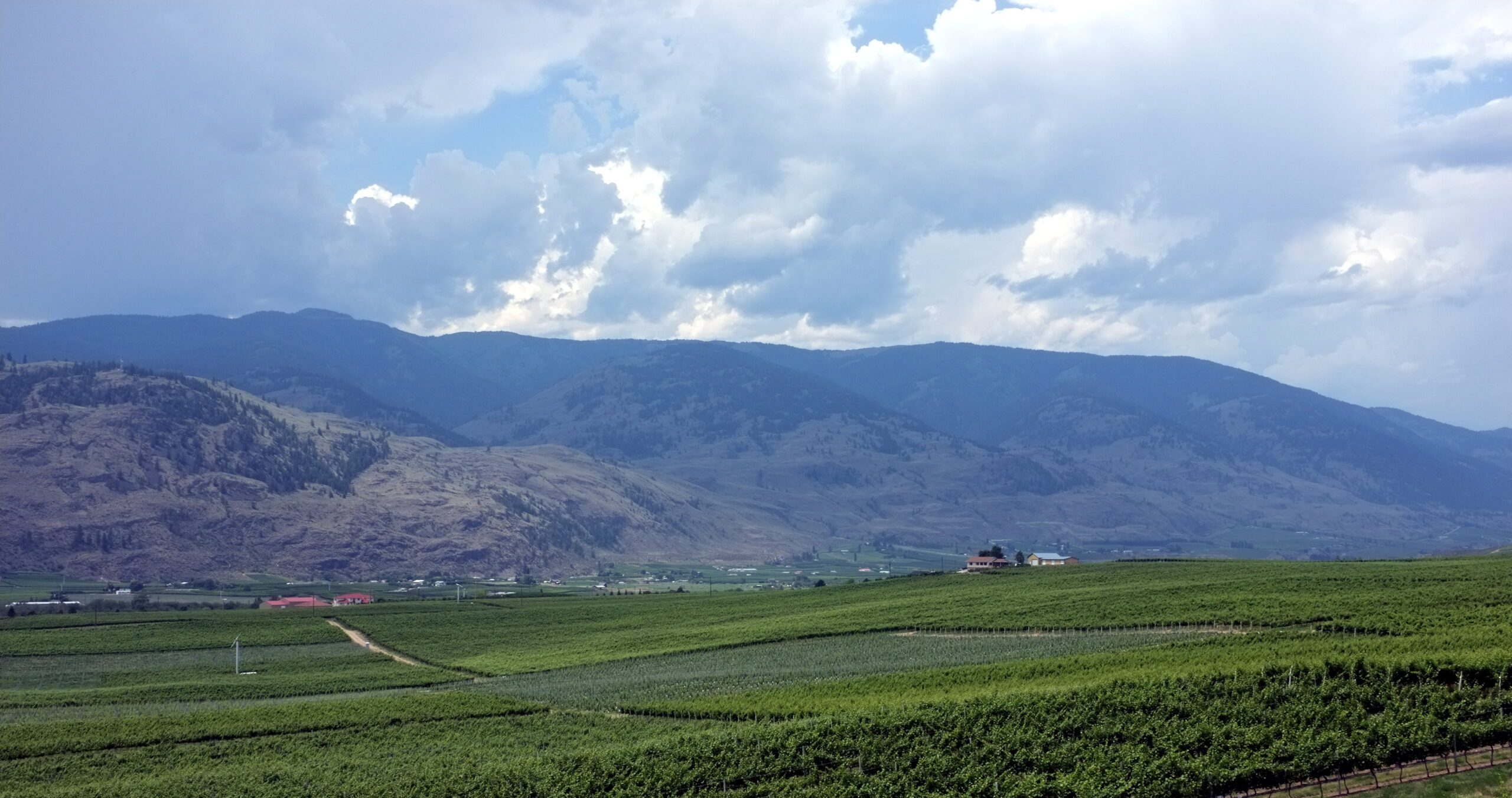 The Okanagan Lifestyle - What to Expect? 4