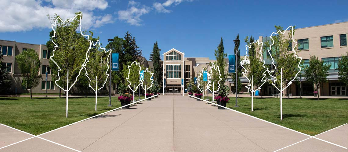 10 Top Colleges in Calgary You Can Study In 3