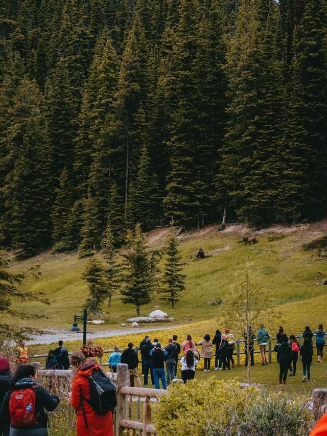 Lakelouise ski resort