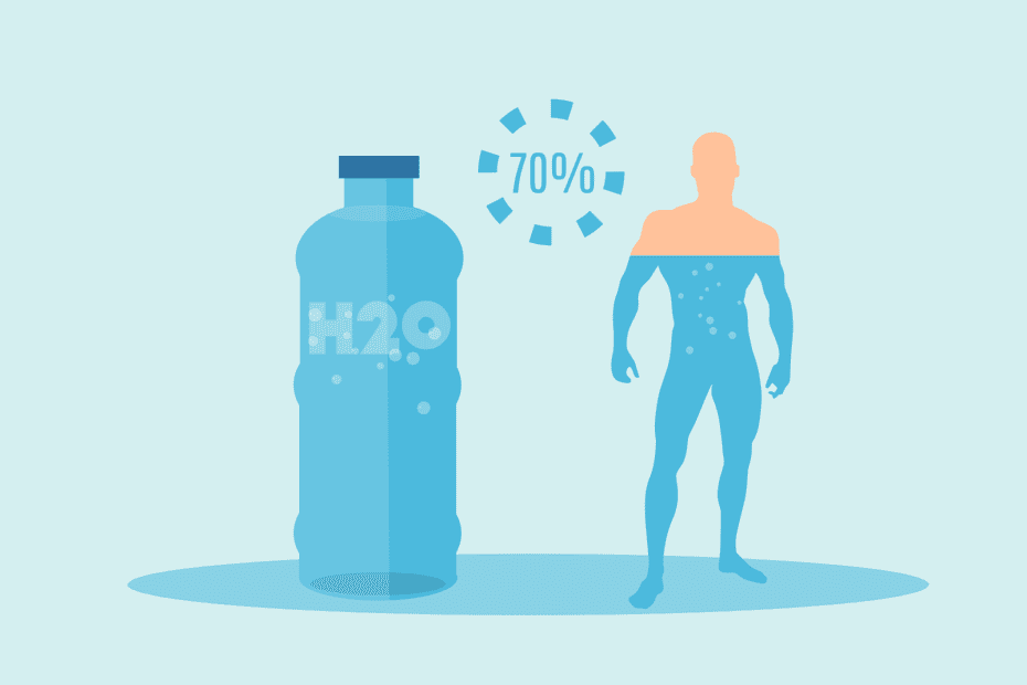 what percentage of human body is water